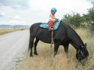 My parents met us at our destination and took care of the kids a lot for us. We stayed at Chico Hot Springs, where Mimi took her first horse ride.