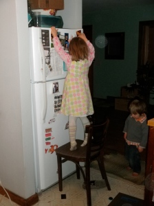 Mimi being resourceful, trying to get something on top of the fridge.